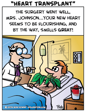 """Heart Transplant"" by Evil Crayon"