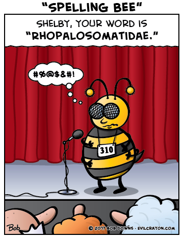 """Spelling Bee"" by Evil Crayon"
