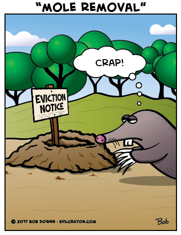 """Mole Removal"" by Evil Crayon"